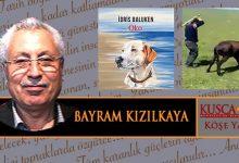 Photo of DANİMARKA BENİ BESLEDİ, GELİŞTİRDİ